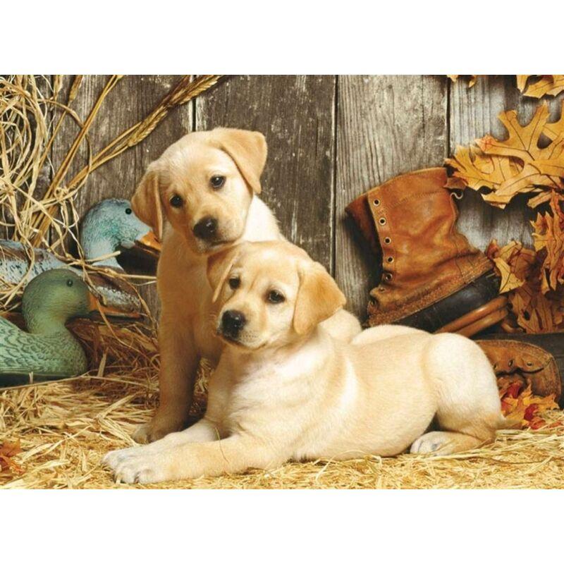 Labradorok 1500 db-os puzzle - Clementoni