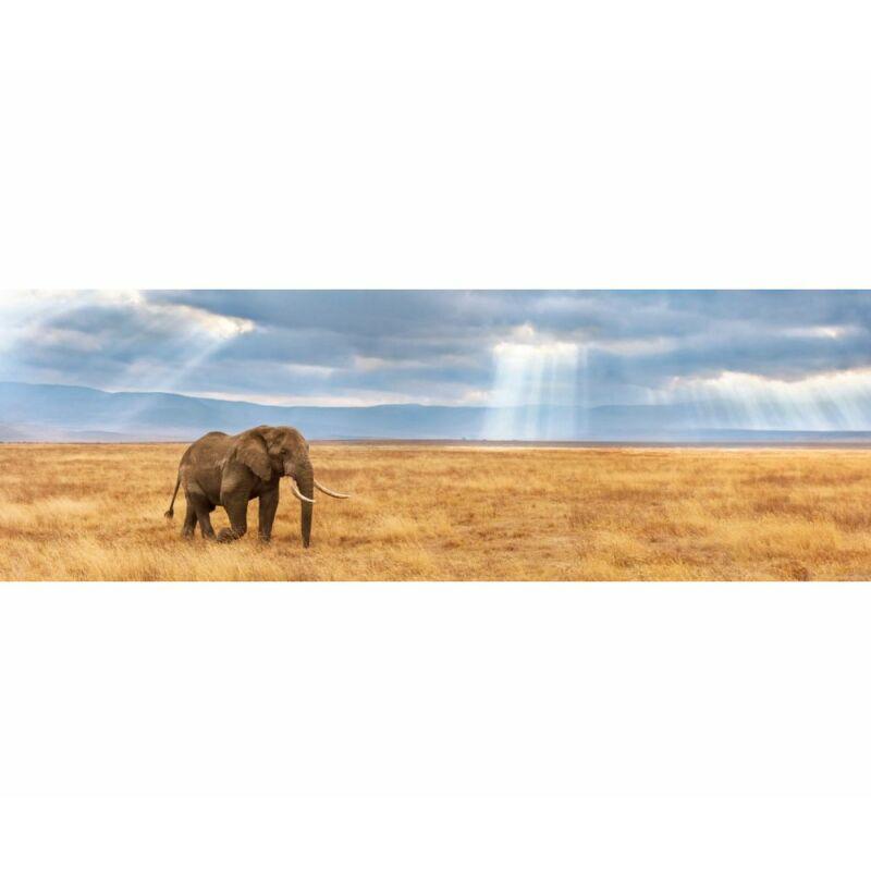 Elefánt a szavannán 1000 db-os panoráma puzzle - Clementoni
