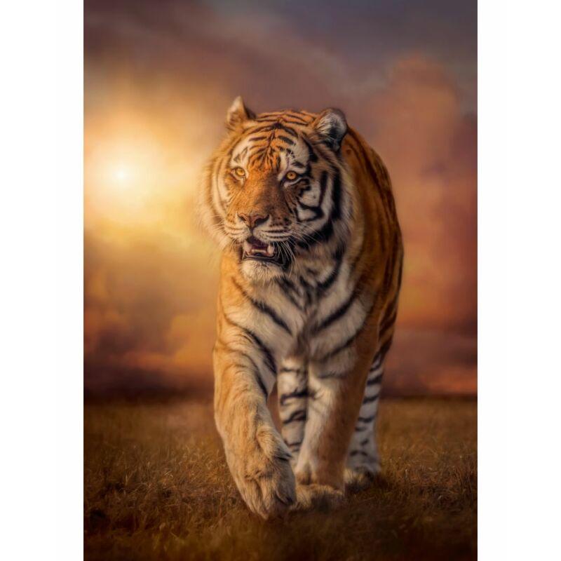 Tigris 1500 db-os puzzle - Clementoni