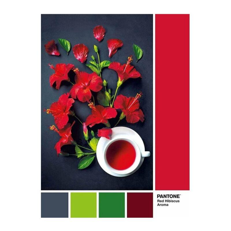 Hibiszkusz tea 1000 db-os puzzle - Clemetoni